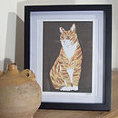 Ginger Cat Illustration Print
