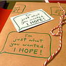 'Just What You Wanted…I Hope!' Gift Wrap