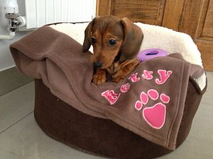 Personalised Dog Blanket - pet accessories