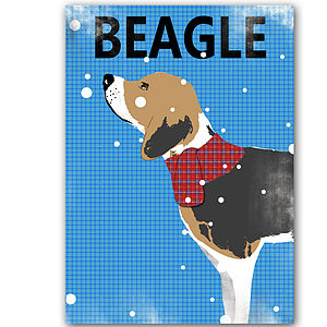 Beagle Dog Illustration - pictures, prints & paintings