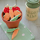 Gardener's Fruit And Veg Biscuit Gift Box