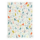 Birds Galore - coral on white