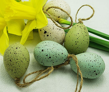 Set Of Six Speckled Eggs