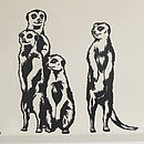 Meerkat Vinyl Wall Stickers
