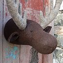 Felt Moose Head
