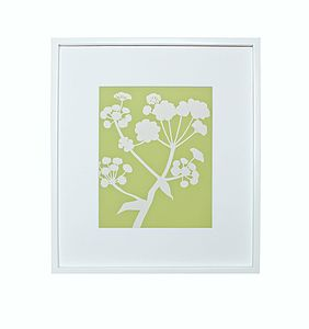 Ferula Botanical Mounted Fine Art Print