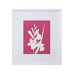 Gladiolus Flower Botanical Mounted Art Print
