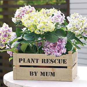 Handmade Wooden Garden Planter - gifts for mothers