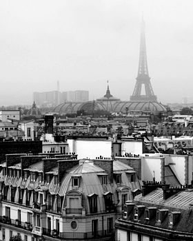 Paris In The Mist Photography Print