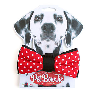 Pet Bow Tie For Dogs Or Cats - pet accessories