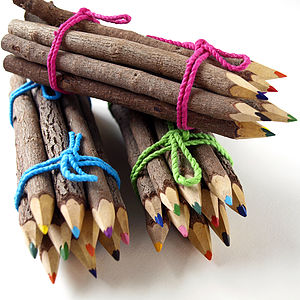 Twig Pencil Crayons - pens & pencils