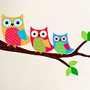 Owls On A Branch Wall Stickers
