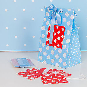 Blue Easy Wrap Gift Bag - ribbon & wrap