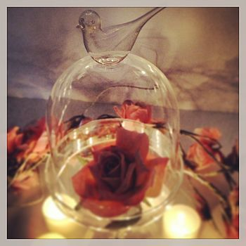 Bird Glass Bell Jar