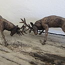 Miniature Bronze Rutting Stags Statue