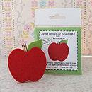 Apple Brooch Or Keyring Mini Craft Kit