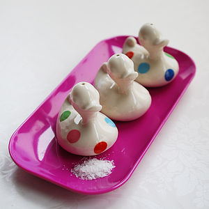 Salt Shaker Duck - salt & pepper pots