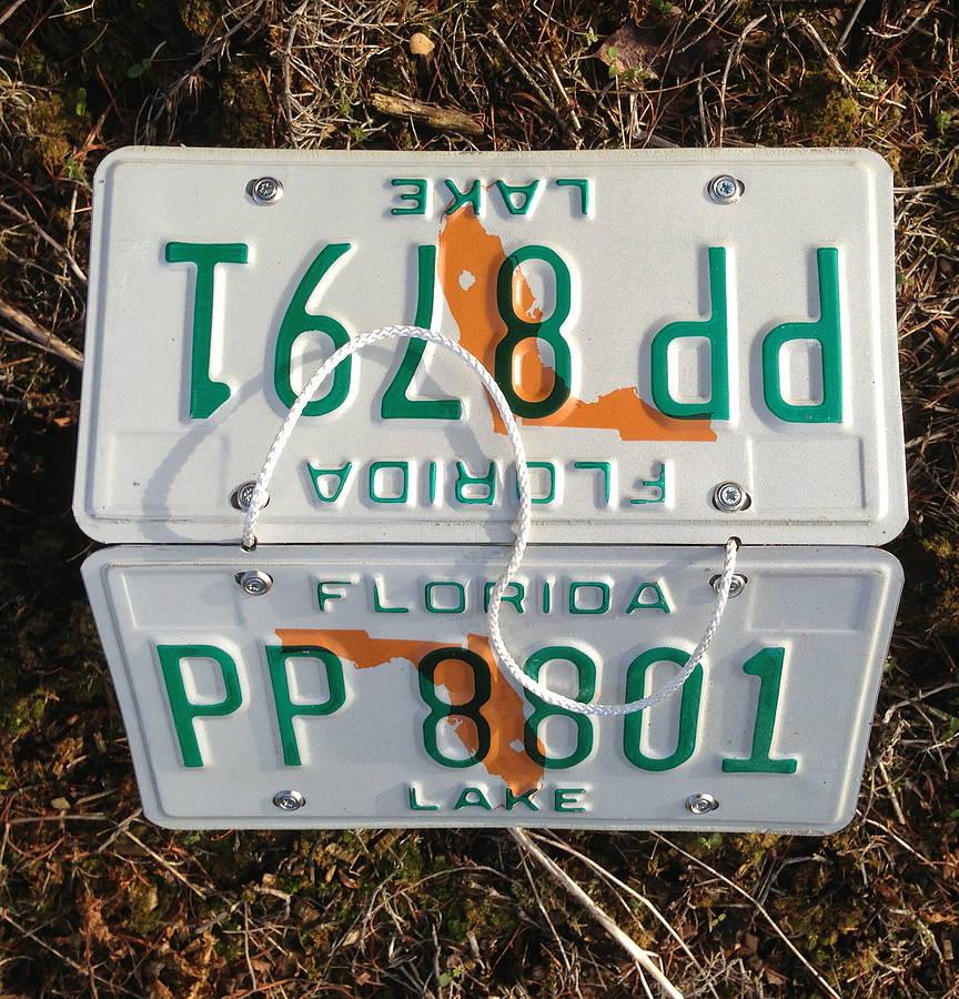 License Plate Bird Feeder By Wudwerx Notonthehighstreet Com