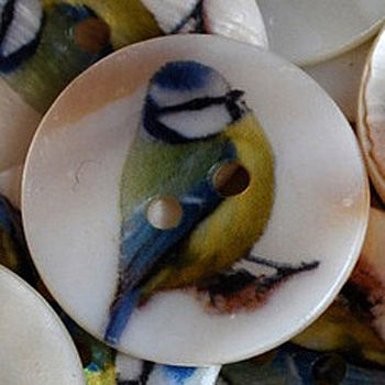 Bluetit Shell Button Brooch