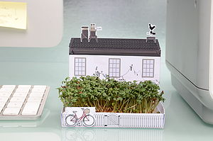 Mini Village Garden Growing Kit - best gifts for girls