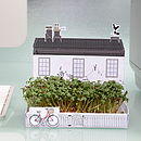 Mini Village Garden Growing Kit