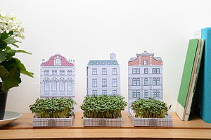 Miniature Garden Grow Kit - flower baskets & boxes