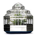 Mini Botanical Plant House And Seed Kit