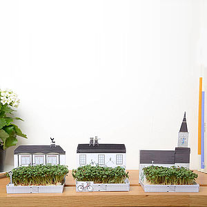 Miniature Garden Grow Kit Village - flower baskets & boxes