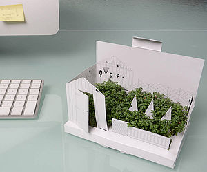 Pop Up Growing Card And Herb Kit