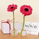 Personalised Boiling Flask Vases Gift Set