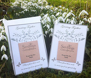 Seed Wedding Favours - wedding favours