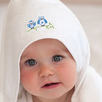 Owl Embroidered Baby Towel Blue