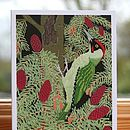 Green Woodpecker Card