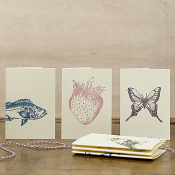Flora And Fauna Greetings Cards