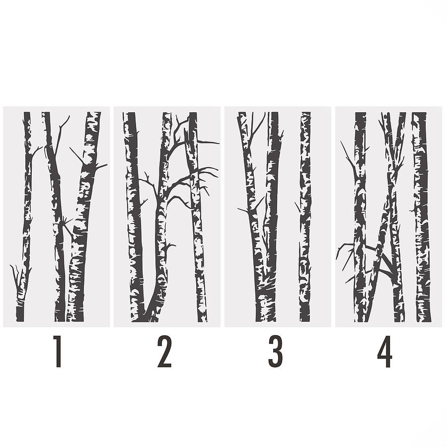 Bedroom wall stickers tree - Homepage Gt Oakdene Designs Gt Silver Birch Trees Vinyl Wall Sticker