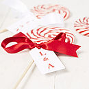 Giant Personalised Love Swirly Lollipop