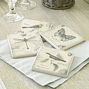 Botanical Butterfly Set Of Four Ceramic Coasters