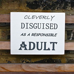 'Cleverly Disguised' Sign