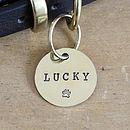 Brass Dog Name ID Tag