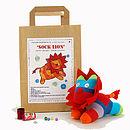 Sock Lion Craft Kit