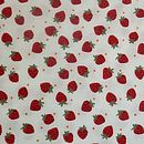 Girl's Initial Strawberry Print Bib
