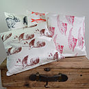 Child's Cushions Guinea Pig, Kitten,Goldfish and Rabbits