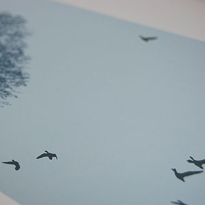 Migration Screen Print