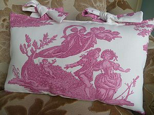 French Toile Cushion - cushions