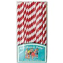 Pack Of 25 Retro Stripe Paper Straws