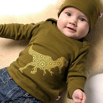 Organic Dinosaur Baby T Shirt