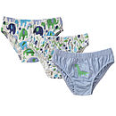 Boy's Underpants Three Pack
