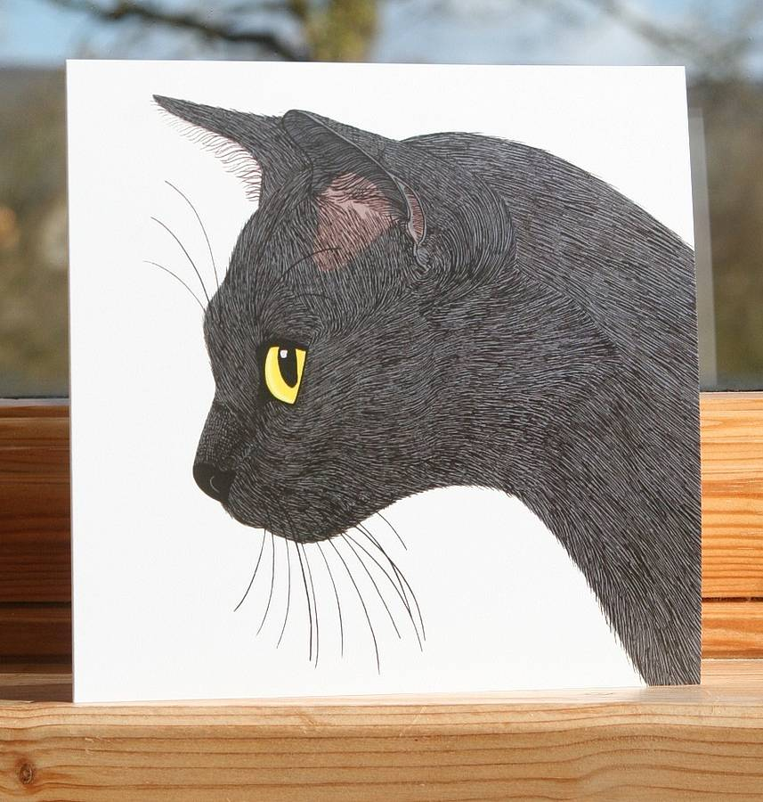 Cat Collection 'Sooty' Greeting Card