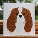 'Cavalier King Charles Spaniel' Dog Card