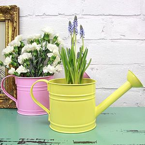 Watering Can Plant Holder - pots & windowboxes